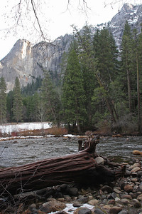 Yosemite National Park, California January 16, 2010 J16(10)