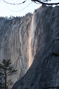 Yosemite National Park, California February 15, 2010 F15(20)