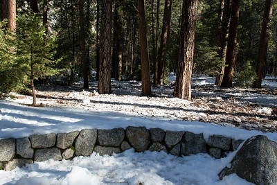 January 17, 2017 Frazil ice accumulation along Lower Yosemite Fall trail.