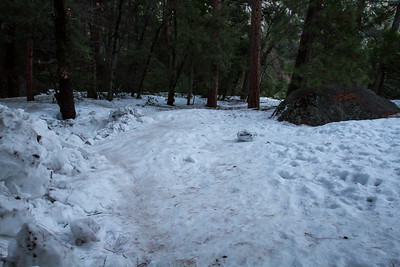 January 16, 2017 Frazil ice built up and took over the Lower Yosemite Fall trail.  Part of the trail was closed when we were there.