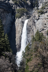 Lower Yosemite Fall April 5, 2016