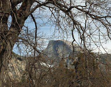 Half Dome from Yosemite Village.