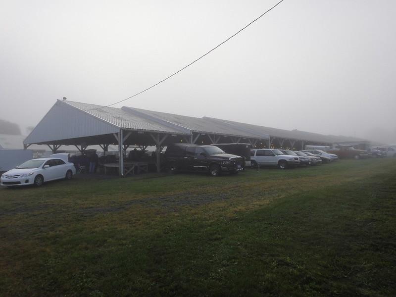 Dense fog for an hour Fri. 7 AM