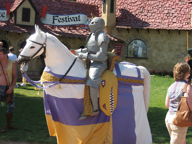 IMG_1155 Faux knight