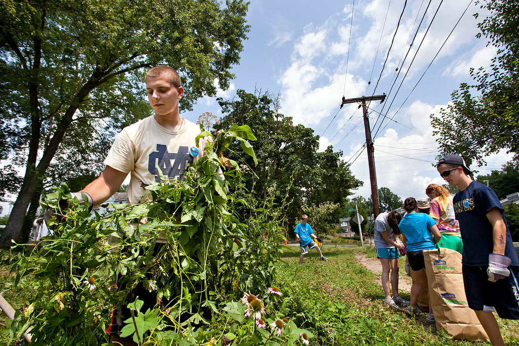 Brenadan Tobey pulls up a handful of invasive vines as he cleans up the Peace Park in Irvington July 10 where he volunteered with others from from St. Pius V in Lynn, Mass. as part of the Young Neighbors in Solidarity program.