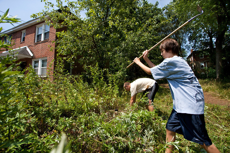 Zach Ceruller clears out some invasive plants at the Peace Park in Irvington July 10 where he volunteered as part of the Young Neighbors in Solidarity program.