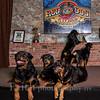 Rottweilers NV with Diane Ciminero  ©2017MelissaFaithKnightFaithPhotographyNV_8075