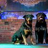 8x12 Rottweilers NV with Diane Ciminero  ©2017MelissaFaithKnightFaithPhotographyNV_8021