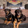 Rottweilers NV with Diane Ciminero  ©2017MelissaFaithKnightFaithPhotographyNV_8083