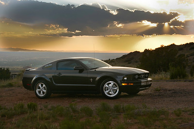 Mustang at Sunset