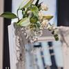 wedding-francesca-1153-2