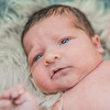 harrison-newborn-108-Edit