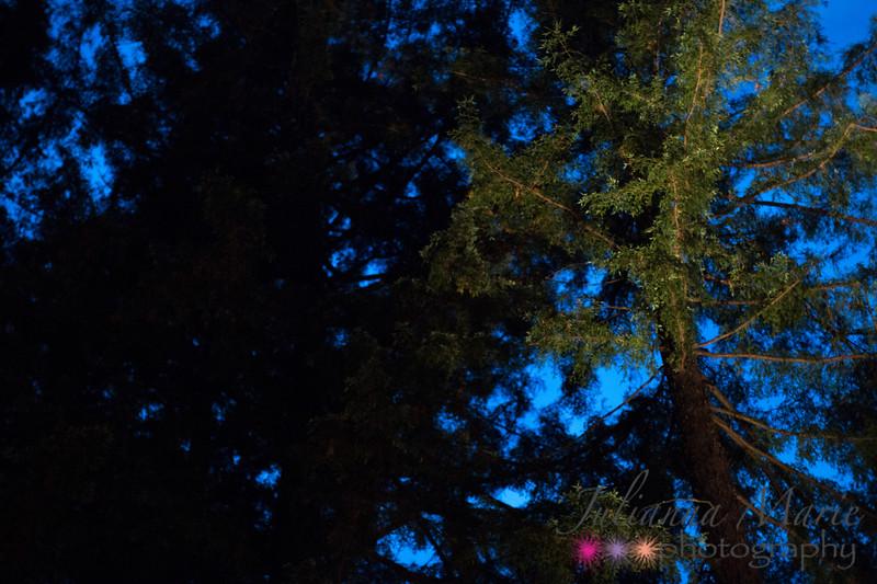 20150911_LCC Worship in Redwoods_0245