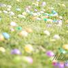 Egg Hunt_20170415_0050