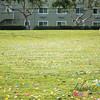 Community Easter Egg Hunt Montague Park Santa Clara_20180331_0023