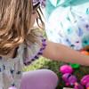 Community Easter Egg Hunt Montague Park Santa Clara_20180331_0222