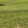 20150404_Easter Egg Hunt_0011