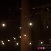20150911_LCC Worship in Redwoods_0342