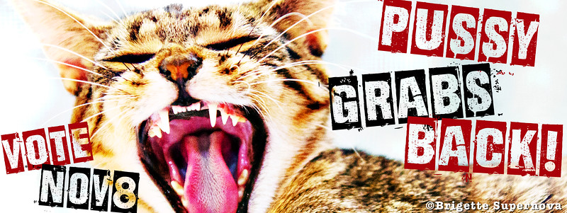 PussyGrabsBack-facebook-cover-2