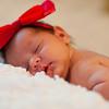 Becca Estrada Photography -  Baby Samantha-15