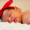Becca Estrada Photography -  Baby Samantha-14
