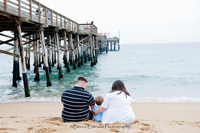 Becca Estrada Photography - Medley Family (17)