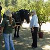 JOHN MUIR MOUNTAIN DAY CAMP 2008