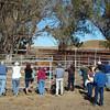 XENOPHON FAMILY PICNIC 2008