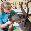 University of Alaska Cooperative Extension<br /> Tanana Valley State Fair<br /> Reindeer