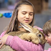 University of Alaska Cooperative Extension<br /> Tanana Valley State Fair<br /> Rabbit