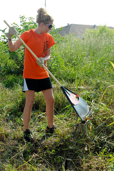 service project - clearing overgrowth in lower 9th ward