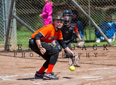 Capo Valley Softball_1331