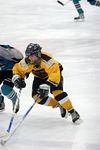 91-92_Bruins_Sharks016