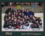 This is designed for an 8x10 or 16x20 poster of the 92/93 NEH Champions the Wild.