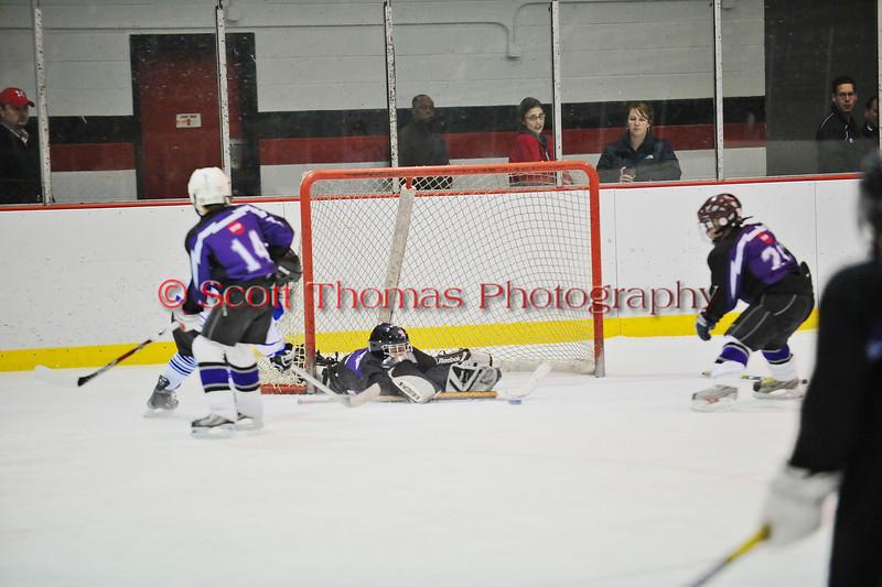 Mite Meltdown 2010. Game 11. Markham (White) vs Pioneer Valley (Purple).