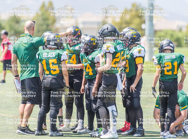 Scrimmage August 20th, 2016