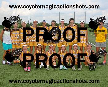 8x10 print for $20 - Adirondack Silver Medal Girls Team Photo  RX0W9638-LRcrop       ESC 8x10 Buy 1 $20.00 USD Buy 3 $50.00 USD
