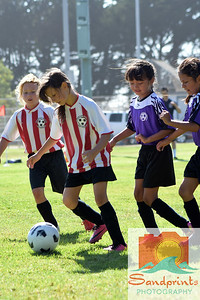 Soccer 080