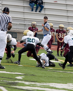 saddleback vs alpine - 013