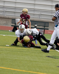 saddleback vs alpine - 014