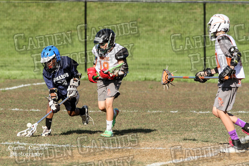 U13 DAVIE vs PPP LAX -5-3-15 -6PM-010
