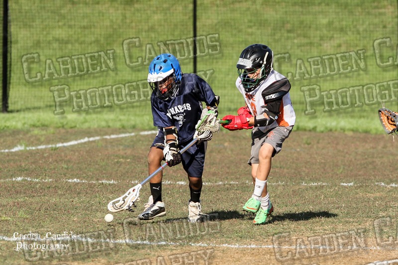 U13 DAVIE vs PPP LAX -5-3-15 -6PM-009