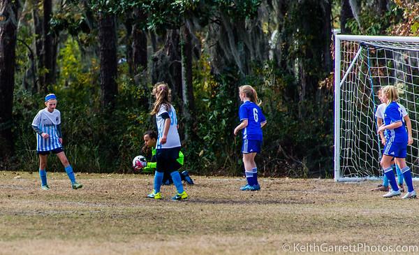 Savannah Game 2