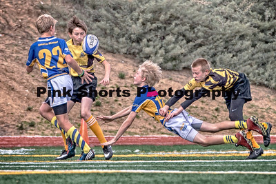 January 30, 2016 - Poway Youth Rugby Tournament