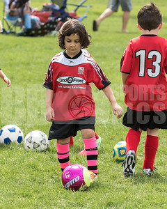 HoildayLions_RedRacers_Game_05062017-9