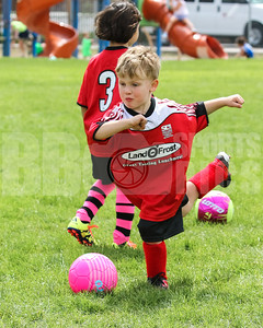 HoildayLions_RedRacers_Game_05062017-45