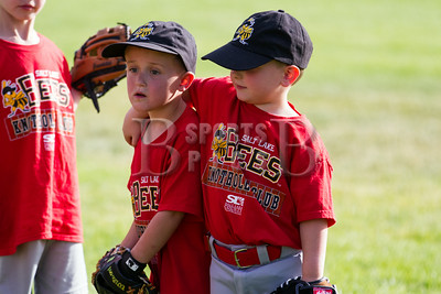HolladayLions_TBall_Team1Thibodeaux_06252014-6