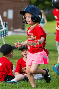 HolladayLions_TBall_Team1Thibodeaux_06252014-87