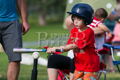 HolladayLions_TBall_Team1Thibodeaux_06252014-95