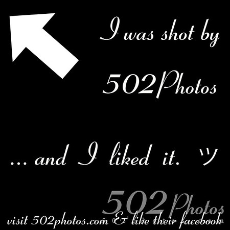This is a little image you can post to your Facebook wall to help advertise 502Photos!